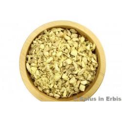 Zenzero rizoma - taglio tisana 100 g