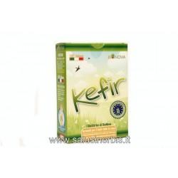 Kefir (starter)